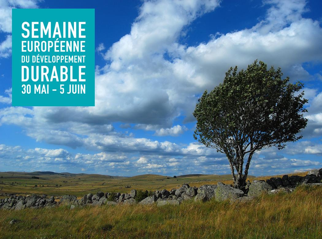 Semaine du développement durable : les départements célèbrent la nature !
