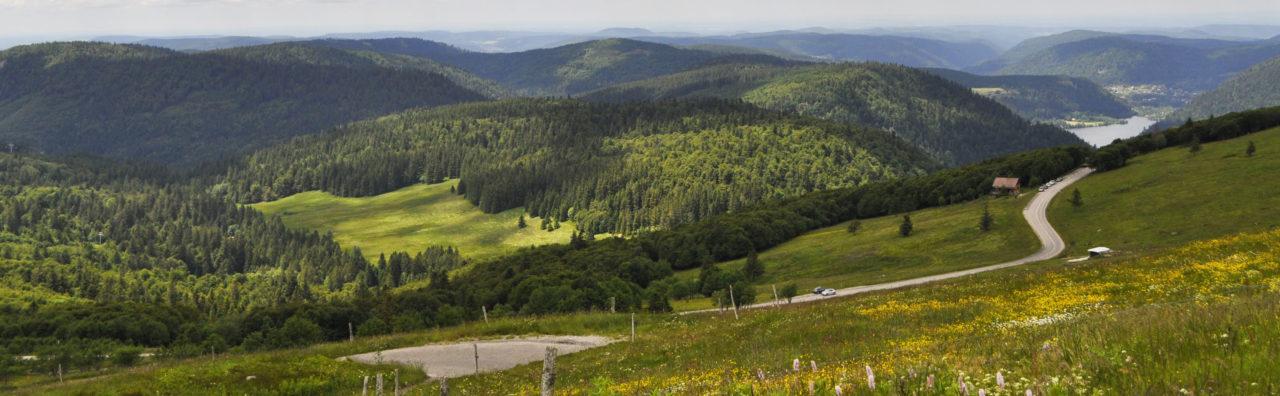 Les Vosges, une terre de tournage inattendue