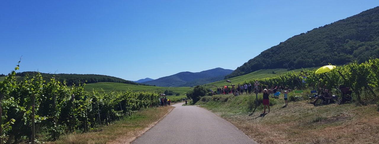 Etape 5 : Sagan renoue avec la victoire en Alsace